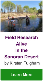 Field Research Alive in the Sonoran Desert by Kirsten Fulgham