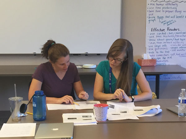 Two teachers collaborating